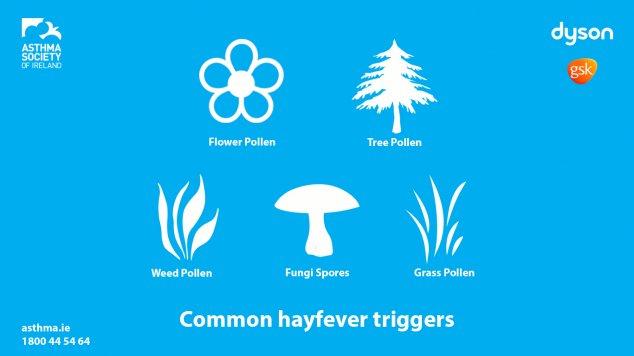Hayfever Triggers
